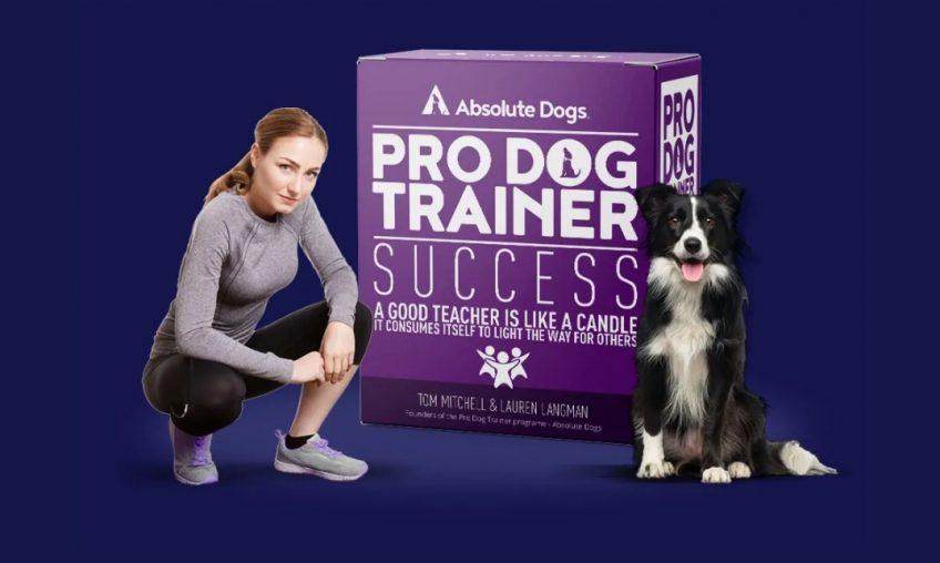 Pro Dog Trainer!